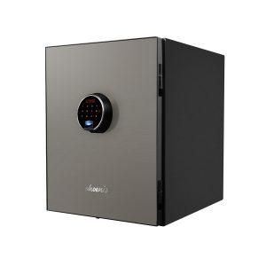LS6011FS-(1)